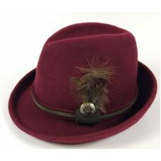 Бордовая шляпа с пером